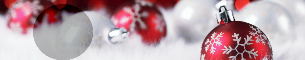 Twin Cities Library's 12 Days of Library Christmas